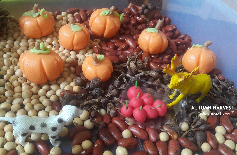 autumn harvest edit